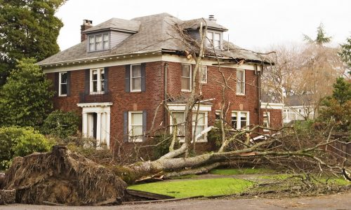 In the windstorm of December 2006, this Seattle house was damaged by a large 100 foot elm tree that was uprooted in the high winds. The root ball tore up the sidewalk in the foreground; tree branches were left scattered over the stately brick home.